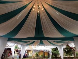 astana canopy 2013 (3)