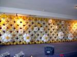 balloon flower backdrop malaysia