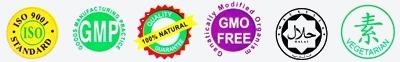 ISO GMP GMO HALAL VEGE logo