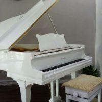 grand-piano-lesson-class
