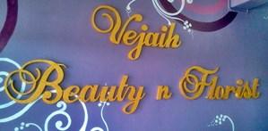 vejaih indian bridal beauty logo