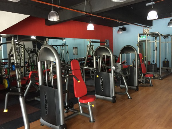 Image result for Gym and Health Club