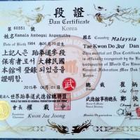 Korea taekwondo cert