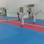 taekwondo center melaka