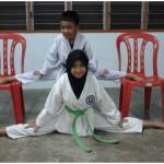 taekwondo for children melaka